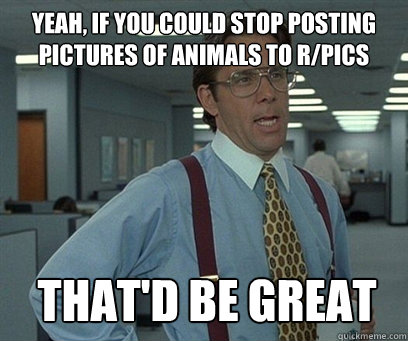 Yeah, if you could stop posting pictures of animals to r/pics That'd be great - Yeah, if you could stop posting pictures of animals to r/pics That'd be great  YEah