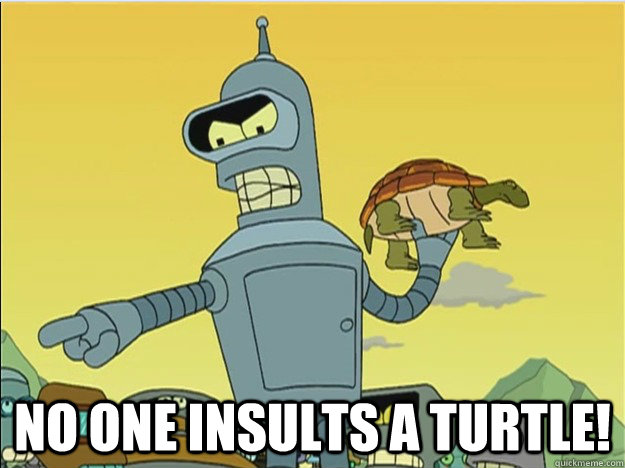 no one insults a turtle! -  no one insults a turtle!  Misc