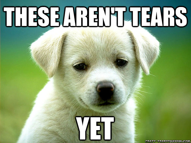 These aren't tears yet - Sad Puppy - quickmeme