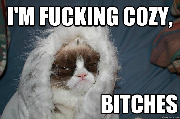 I'm fucking cozy, Bitches - I'm fucking cozy, Bitches  Cold Grumpy Cat