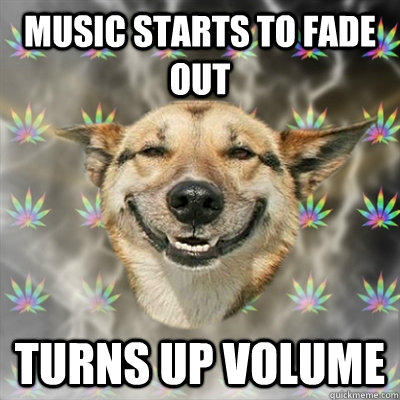 music starts to fade out turns up volume  Stoner Dog