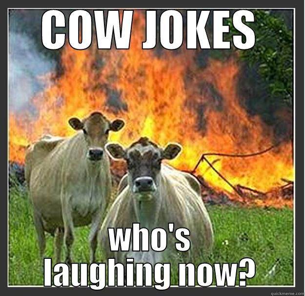 Enough with the cow jokes! - COW JOKES WHO'S LAUGHING NOW? Evil cows