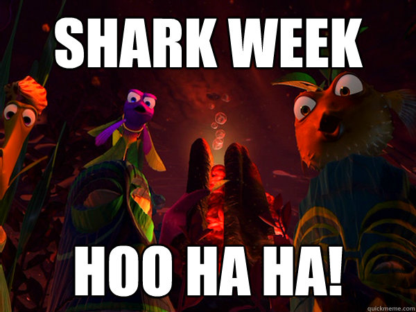 Shark Week Hoo Ha Ha! - Shark Week Hoo Ha Ha!  Finding nemo shark bait