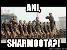 Ani, Sharmoota?! - Ani, Sharmoota?!  north korea slut walk