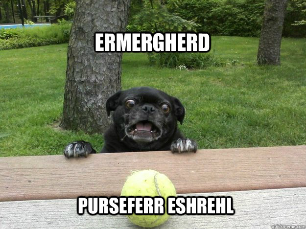 Ermergherd Purseferr Eshrehl Derp Dog Tennis Ball