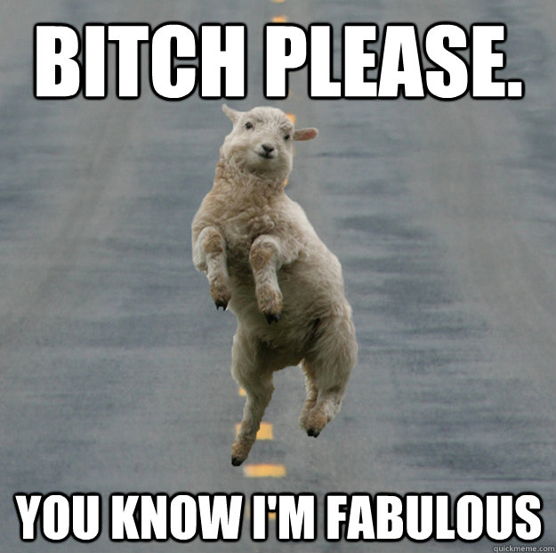 82d8bf88a8a6844de0cf9bd80e86fa0e30bea55eb5cf7fa314927084eab5ba61 bitch please you know i'm fabulous skipping lamb quickmeme