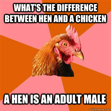 what's the difference between hen and a chicken a hen is an adult male  Anti-Joke Chicken