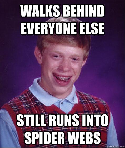 walks behind everyone else still runs into spider webs - walks behind everyone else still runs into spider webs  Bad Luck Brian