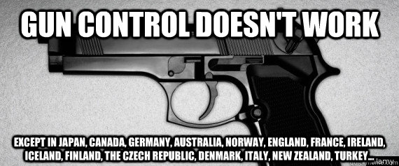 gun control 9 essay