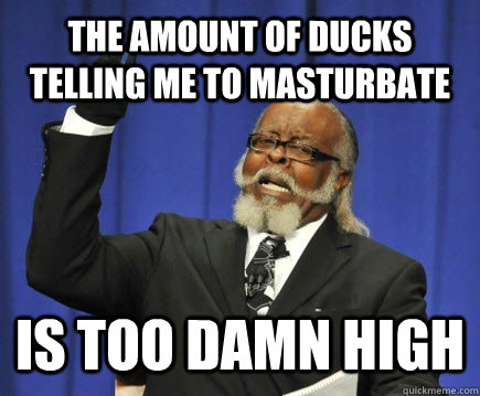The amount of ducks telling me to masturbate  is too damn high