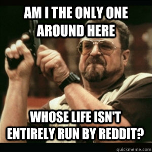 Am i the only one around here Whose life isn't entirely run by reddit? - Am i the only one around here Whose life isn't entirely run by reddit?  Misc