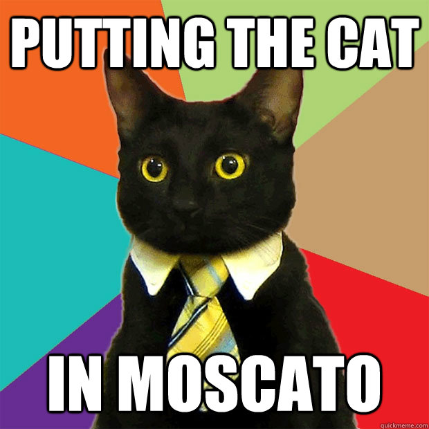 Putting the cat in moscato - Putting the cat in moscato  Business Cat