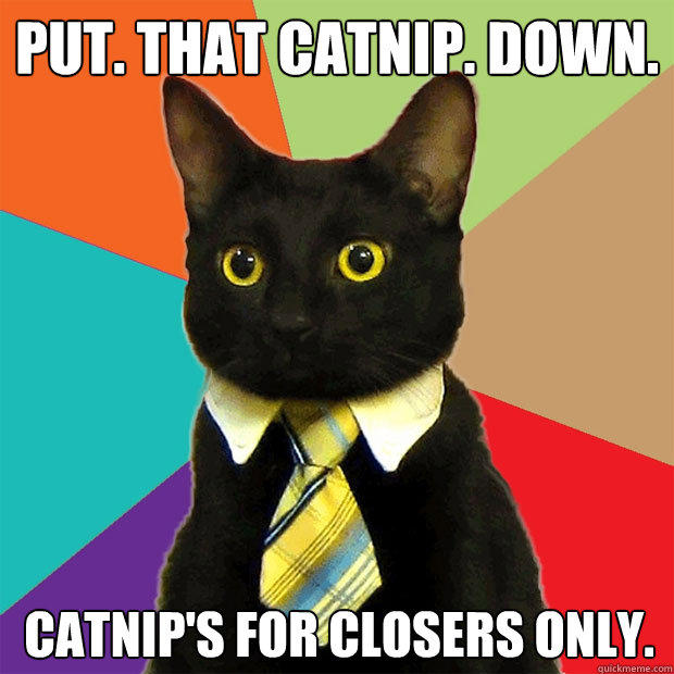 Put. That catnip. Down.  catnip's for closers only.  - Put. That catnip. Down.  catnip's for closers only.   Business Cat