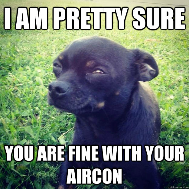 i am pretty sure you are fine with your aircon - i am pretty sure you are fine with your aircon  Skeptical Dog