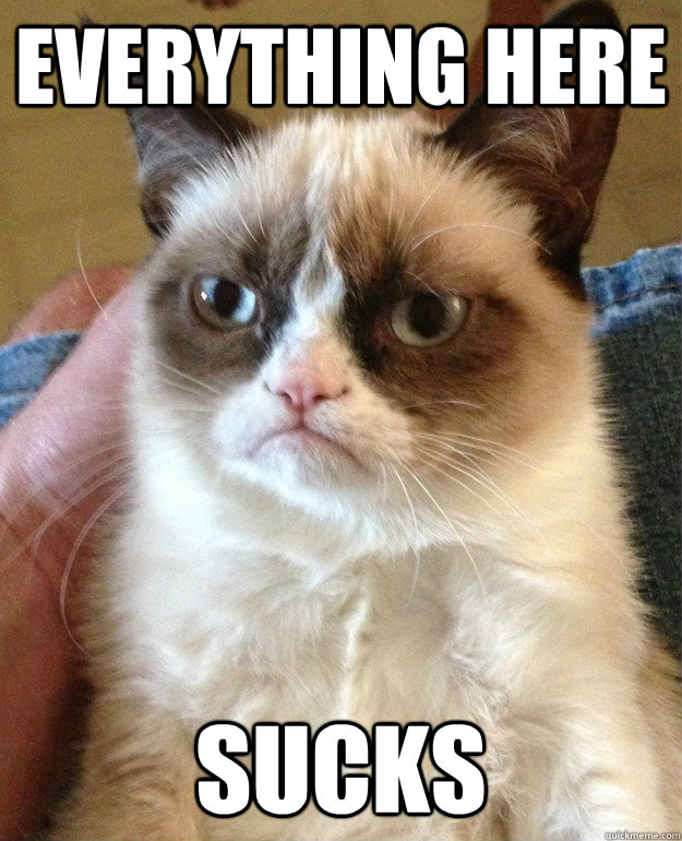 everything here sucks - everything here sucks  Grumpy Cat