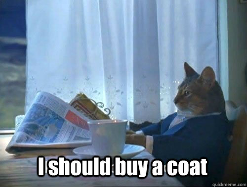 I should buy a coat - I should buy a coat  Fancy Cat