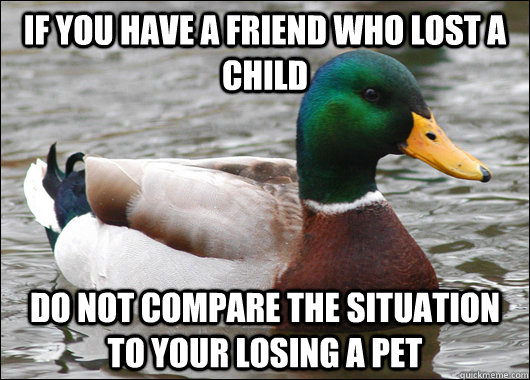 If you have a friend who lost a child Do not compare the situation to your losing a pet - If you have a friend who lost a child Do not compare the situation to your losing a pet  Actual Advice Mallard