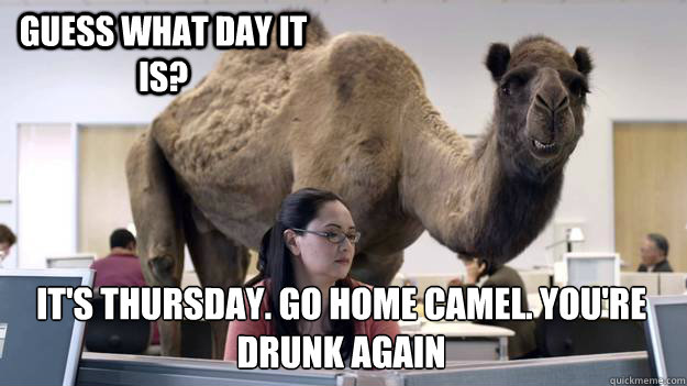 Geico Happy Hump Day Images Hump day geico.