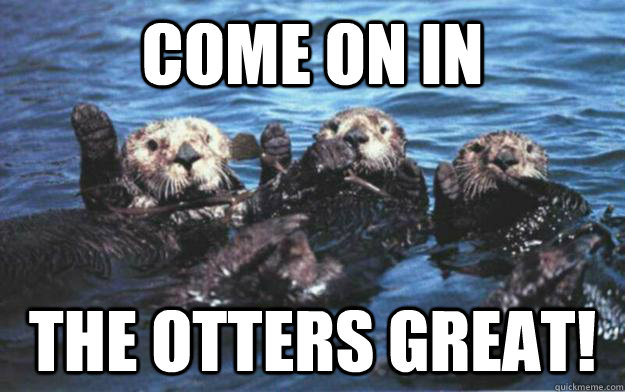 Come on in The otters great! - Come on in The otters great!  Otter Puns