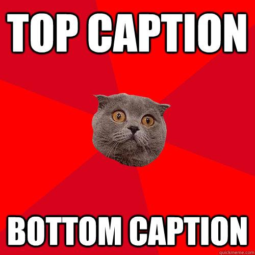 837d1a9e2636bd34c720c3c53a1b6cec948dc121ea3f9cad35e86397968adf36 chronic anxiety cat memes quickmeme