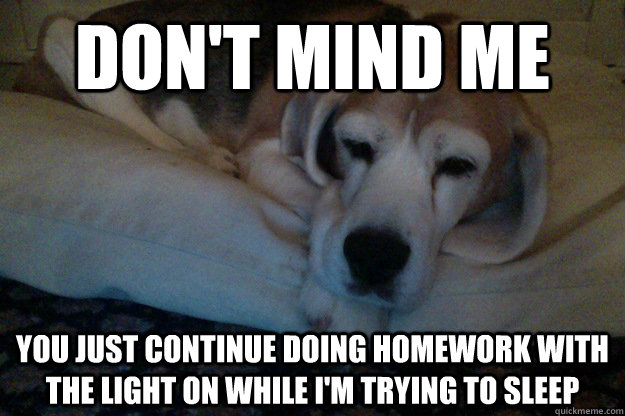 DON'T MIND ME YOU JUST CONTINUE DOING HOMEWORK WITH THE LIGHT ON WHILE I'M TRYING TO SLEEP  Condescending Beagle