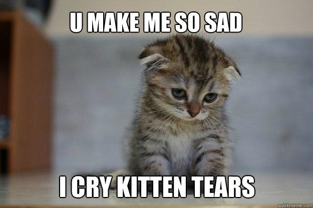 U make me so sad i cry kitten tears - U make me so sad i cry kitten tears  Sad Kitten