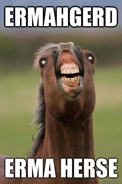 ermahgerd erma herse   Derp Horse