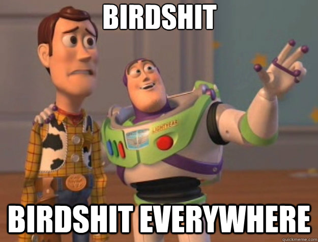 Birdshit birdshit everywhere - Birdshit birdshit everywhere  Toy Story