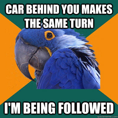 car behind you makes the same turn i'm being followed - car behind you makes the same turn i'm being followed  Paranoid Parrot