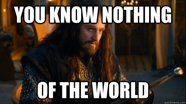 Image result for thorin you know nothing of the world gif
