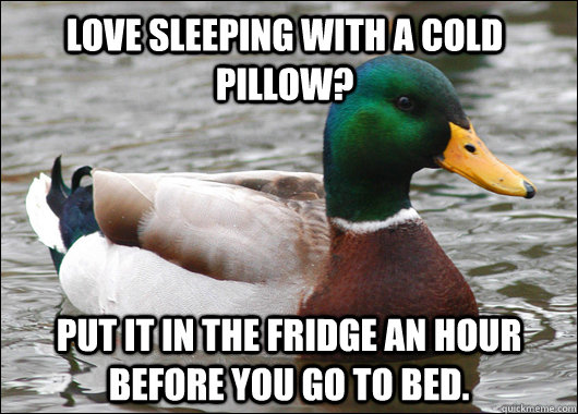 Love sleeping with a cold pillow? put it in the fridge an hour before you go to bed. - Love sleeping with a cold pillow? put it in the fridge an hour before you go to bed.  Actual Advice Mallard