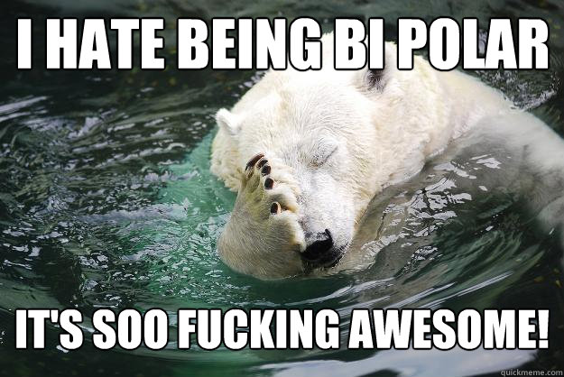 I hate being bi polar It's soo fucking awesome!