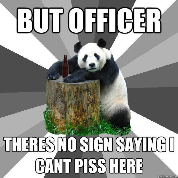 Consider, that kung fu panda piss congratulate