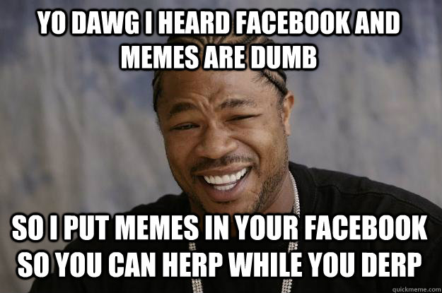 YO DAWG I heard facebook and memes are dumb so i put memes in your facebook so you can herp while you derp  Xzibit meme