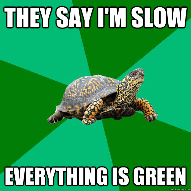 THEY SAY I'M SLOW Everything is green - THEY SAY I'M SLOW Everything is green  Torrenting Turtle