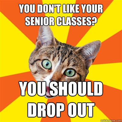 you don't like your senior classes? you should drop out - you don't like your senior classes? you should drop out  Bad Advice Cat