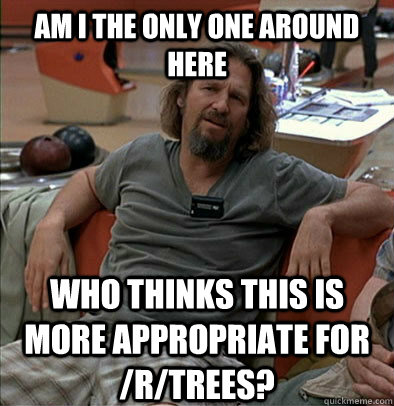 Am I the only one around here Who thinks this is more appropriate for /r/trees? - Am I the only one around here Who thinks this is more appropriate for /r/trees?  The Dude