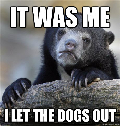 It was me I let the dogs out  Confession Bear