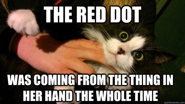 THE RED DOT WAS COMING FROM THE THING IN HER HAND THE WHOLE TIME
