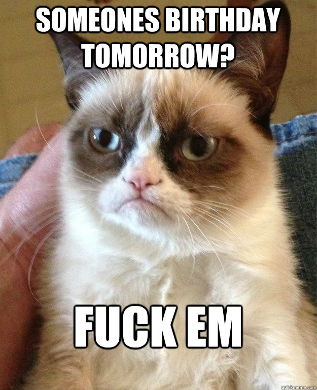 someones birthday tomorrow? Fuck em - someones birthday tomorrow? Fuck em  Grumpy Cat