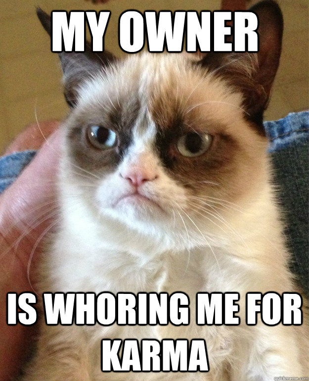 My owner Is whoring me for karma - My owner Is whoring me for karma  Grumpy Cat