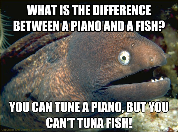 What is the difference between a piano and a fish? You can tune a piano, but you can't Tuna Fish!  Bad Joke Eel