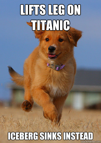 Lifts leg on Titanic Iceberg sinks instead - Lifts leg on Titanic Iceberg sinks instead  Ridiculously Photogenic Puppy