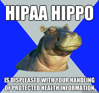 HIPAA HIPPO Is displeased with your handling of protected health information - HIPAA HIPPO Is displeased with your handling of protected health information  Skeptical Hippo