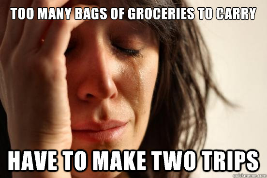 Too many bags of groceries to carry Have to make two trips - Too many bags of groceries to carry Have to make two trips  First World Problems