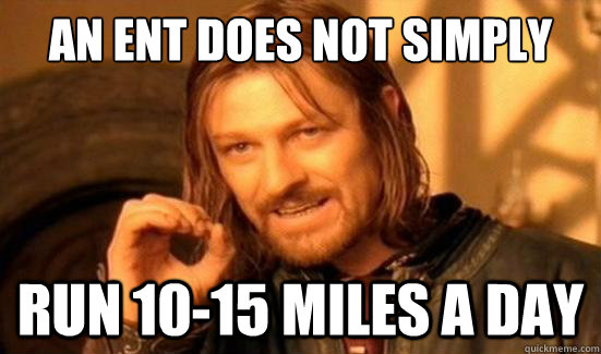 An Ent Does Not Simply run 10-15 miles a day - An Ent Does Not Simply run 10-15 miles a day  Boromir