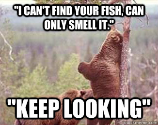 Smell from vagina Fish