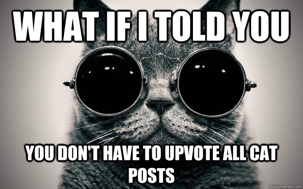 What if i told you You don't have to upvote all cat posts  Morpheus Cat Facts