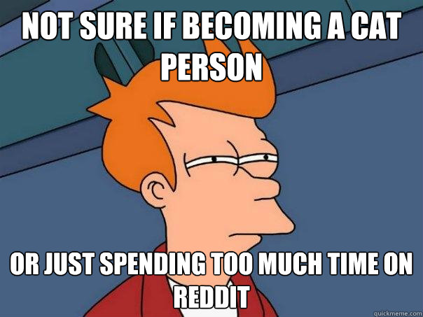 Not sure if becoming a cat person Or just spending too much time on reddit - Not sure if becoming a cat person Or just spending too much time on reddit  Futurama Fry