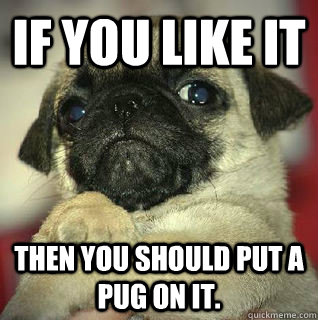 If you like it then you should put a pug on it.